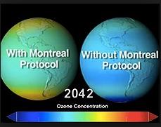 Ozone and Protocol copy