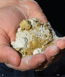 Soil in hand copy