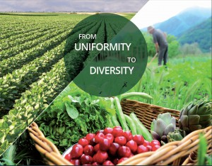 Agroecology cover copy