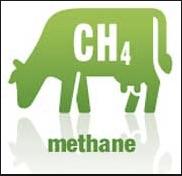 methane copy